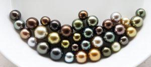 Fiji pearls, civa